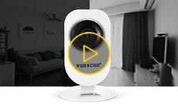 Обзор беспроводной IP-камеры Wanscam HW0026